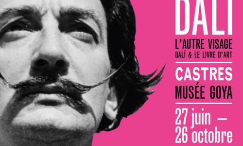 dali_exposition_castres_picdenore_pull_madeinfrance